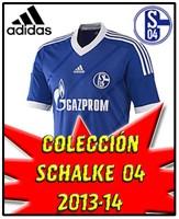 SCHALKE 04 NEW 2013-14