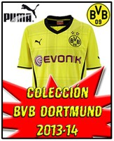 BVB DORTMUND NEW 2013-14